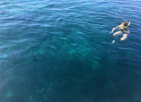 Dive into Blue Lagoon