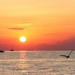 Night Fishing Trogir